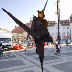 The Flying Fox Bats